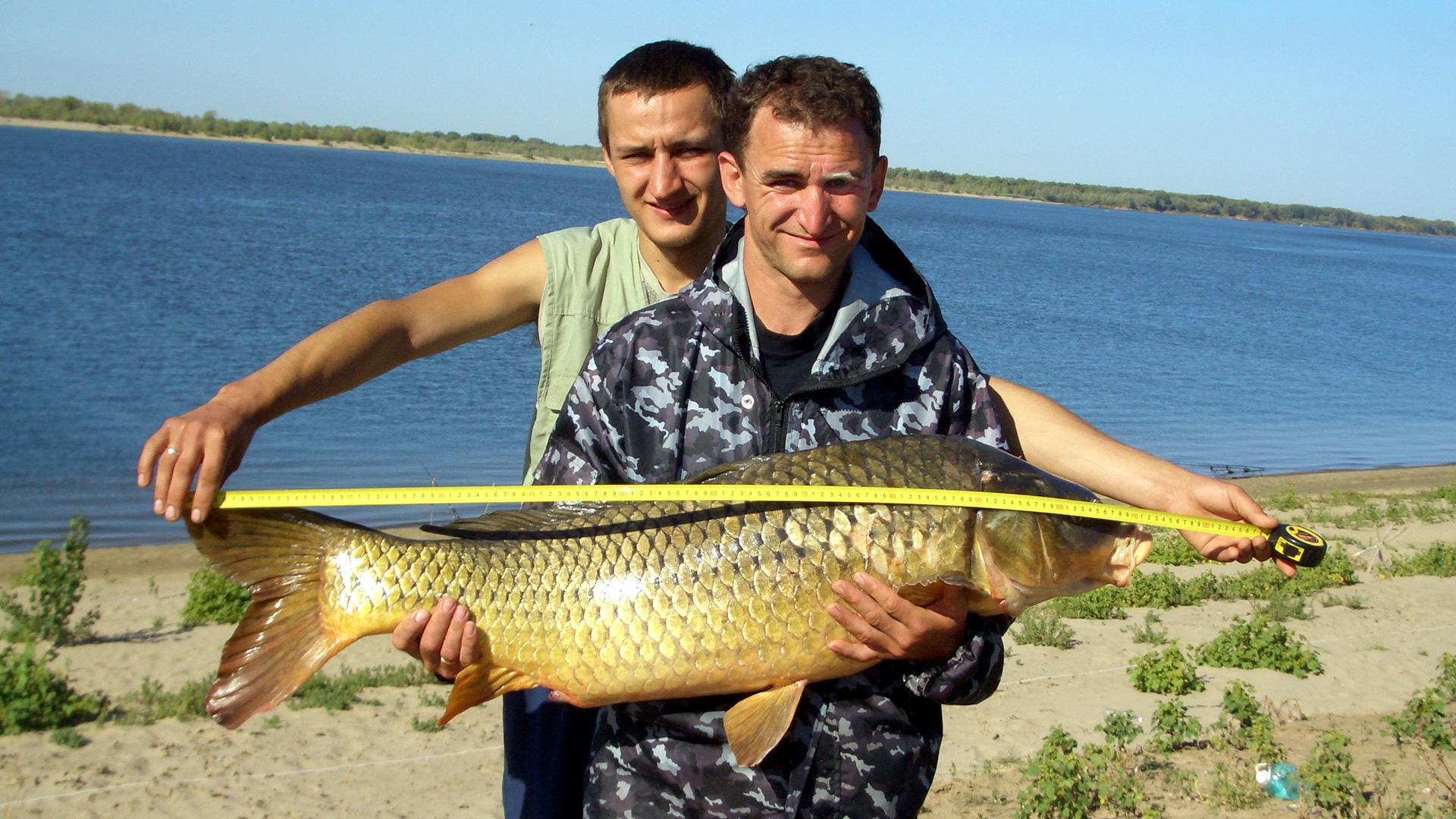 Рыбалка в окрестностях Волгограда и области летом 2021